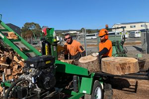 Tree Removalist Arborist Adelaide Bradleys Tree & Stump Removal